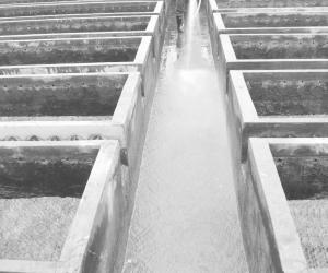 """吉福水厂职工清洗水池迎接""""世界水日""""来参观的学生和市民"""