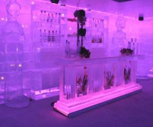 组图:世界上精美绝伦的冰雕艺术品