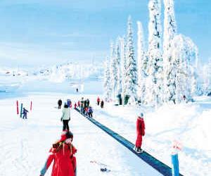 去芬兰体验冰雪乐趣(图)