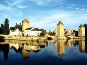 法国:到圣诞树的故乡做客