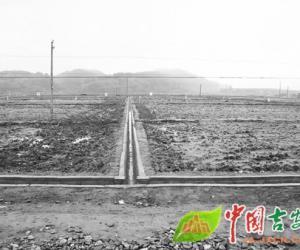 """永新县统筹推进各类涉农项目中的""""小农水""""建设"""