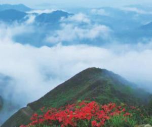 天湖山的四月