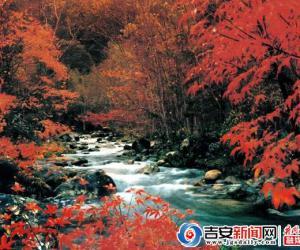 圣地井冈山 大美中国红